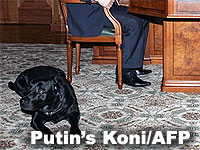 Vladimir Putin and his black lab Koni
